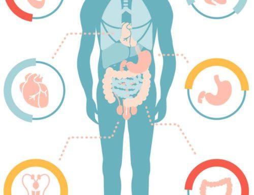 Le microbiote en cause dans des AVC